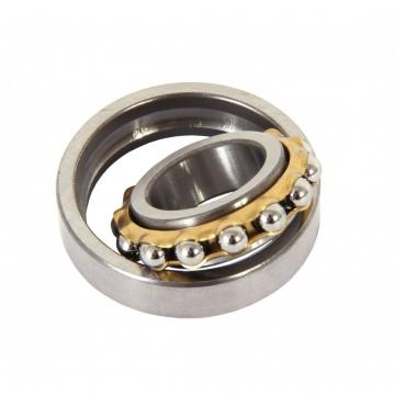 SKF 6007 RSJEM  Single Row Ball Bearings