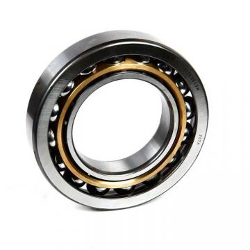SKF 6309-RS1/C3GJN  Single Row Ball Bearings