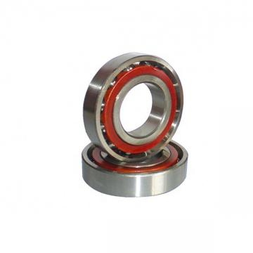 SKF 6305-2RS1/GJN  Single Row Ball Bearings
